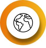 College internationalization